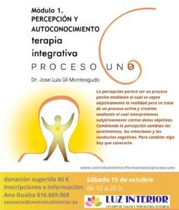 proceso-uno-jose-luis-gil-monteagudo-poster-copia