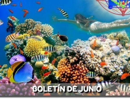 BOLETÍN DE JUNIO